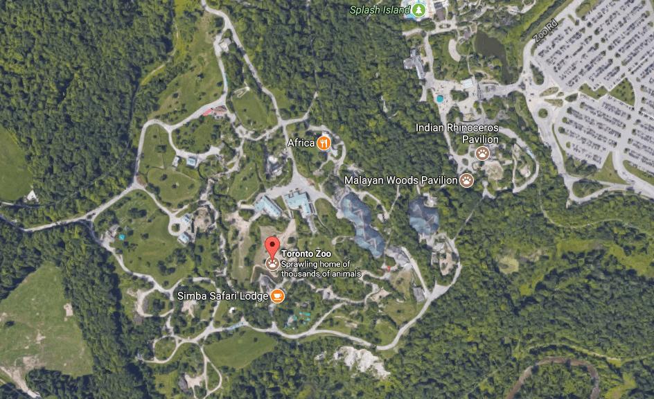 toronto-zoo.PNG