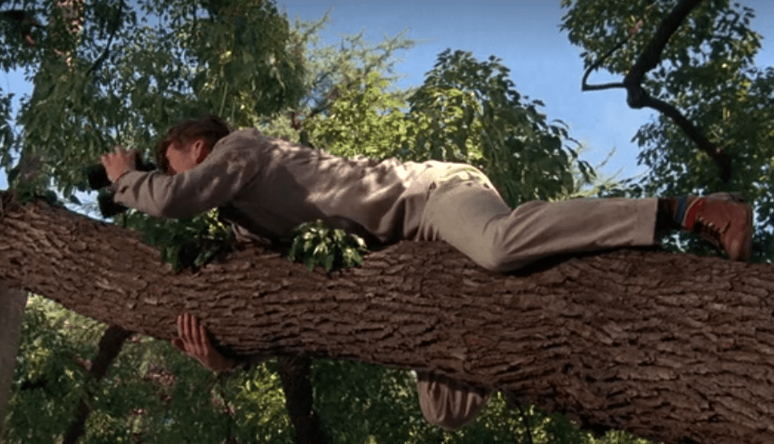 george-mcfly-tree.PNG