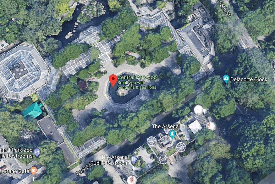 central-park-zoo2.PNG