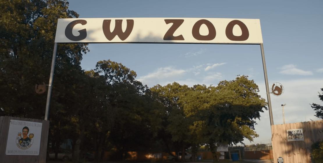 gw-zoo