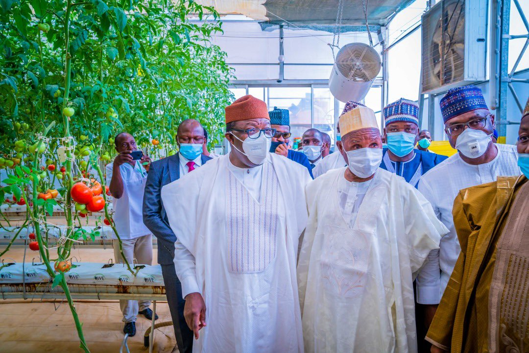 Fayemi and other inspecting the greenhouse farm
