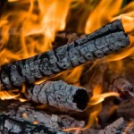 wood-bioenergy-report