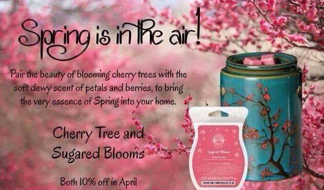 Spring Is In The Air – Save 10% On Featured Scentsy Products