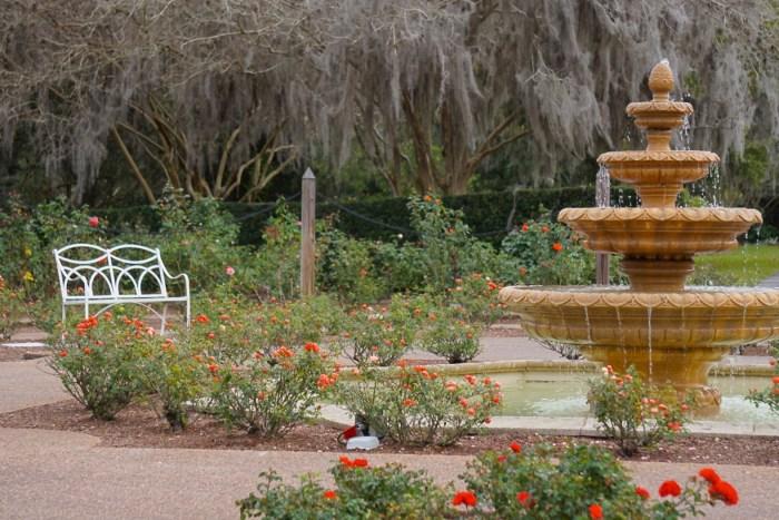 Leu Gardens Rose Garden