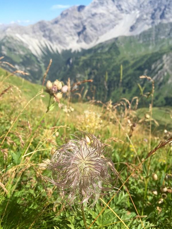Liechtenstein scenery