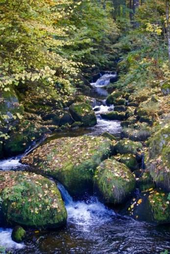 Triberg Germany Waterfalls
