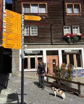 Edelweiss Trail in Zermatt