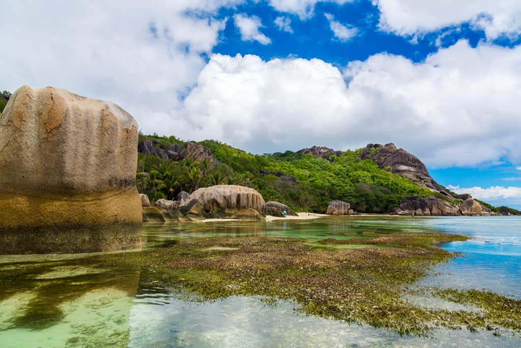 Volunteering in the Seychelles