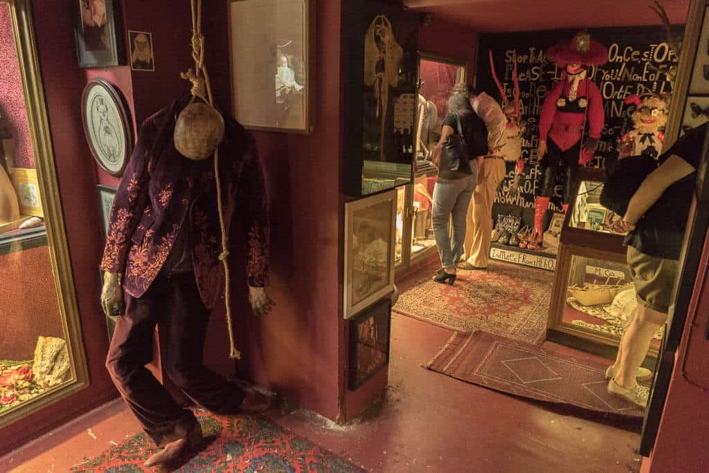 The Viktor Wynd Museum of Curiosities, Fine Art & Natural History