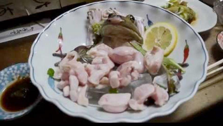 frog_sushi3