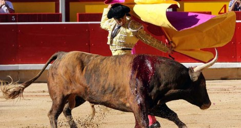 I Went to a Bull Fight in Spain