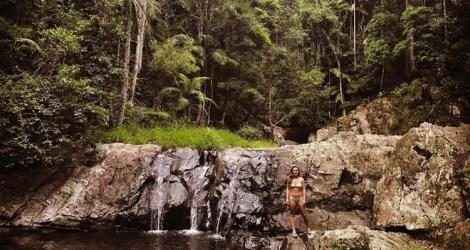 Gold Coast: Cougal Cascades