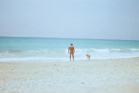 Too Many Dicks on the Beach