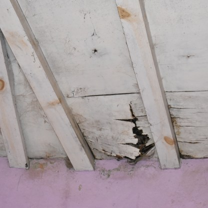 Roof rot and mold in roof and walls