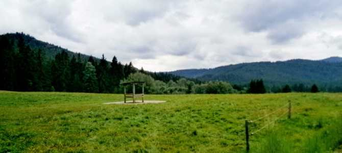 7 things to do in the Bavarian Forest