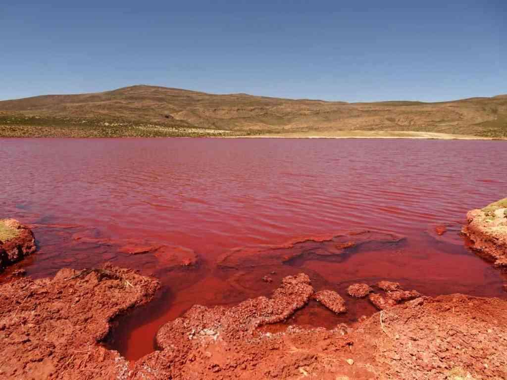 Laguna Roja Chile