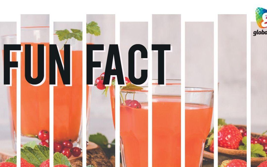 TAKA Fun Fact with CEO Mark McKnight