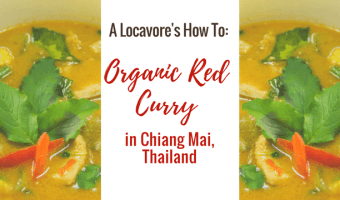 My Adventure Cooking Organic Thai Food in Thailand