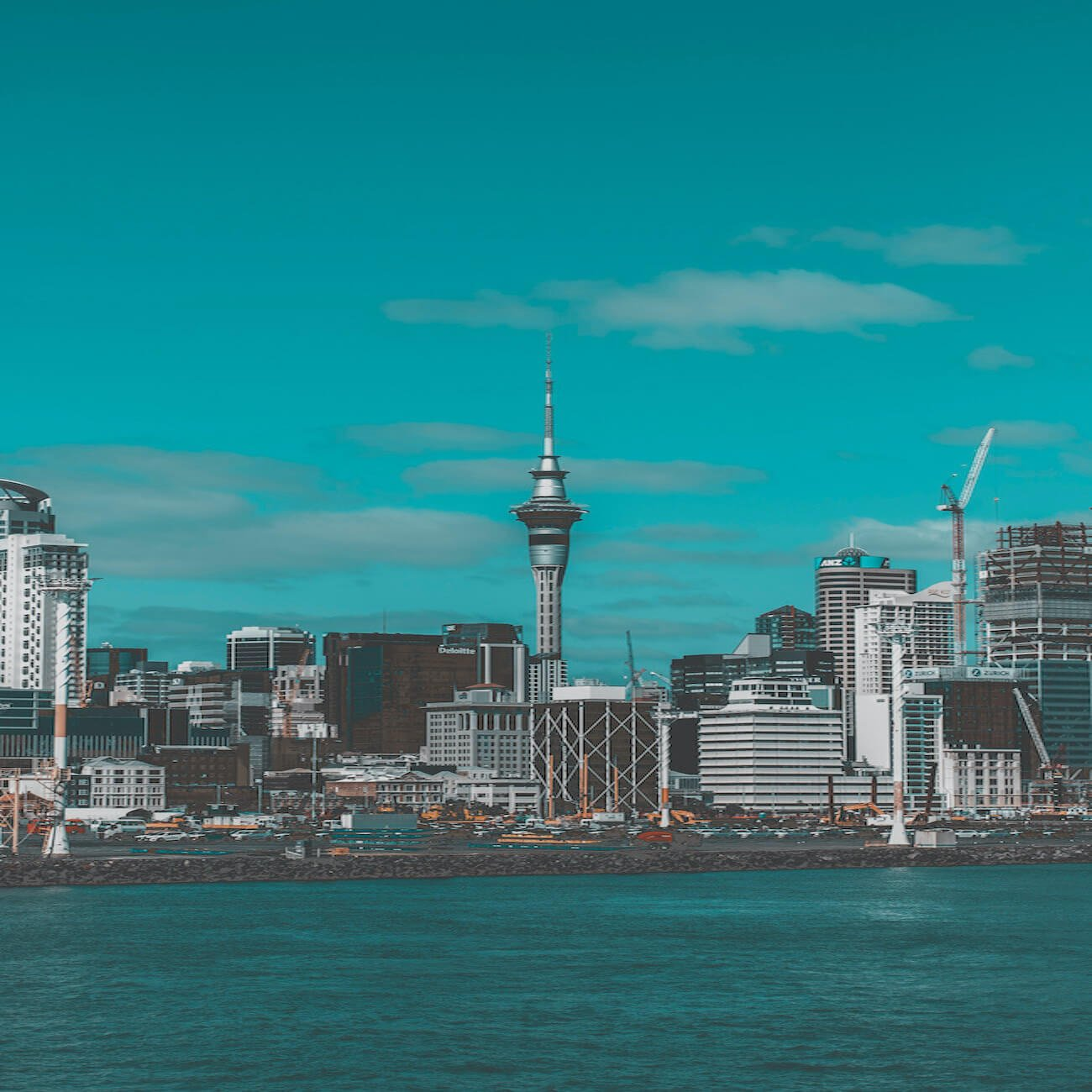The Ambience of New Zealand 1
