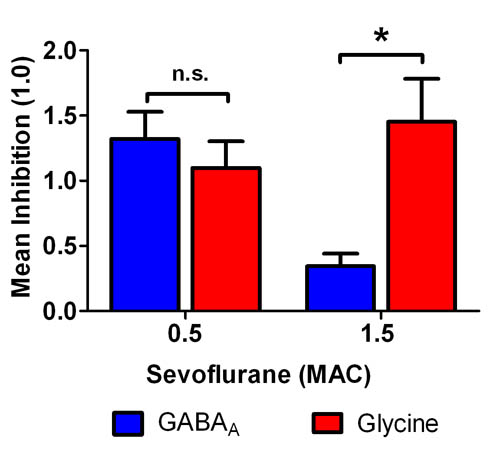 Opposing Actions of Sevoflurane on GABAergic and Glycinergic Synaptic Inhibition in the Spinal Ventral Horn- Global Medical Discovery