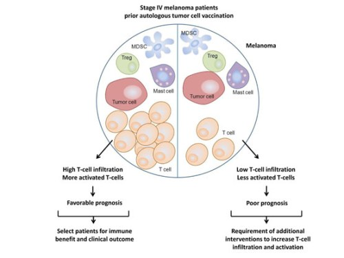 Immune-Escape Markers in Relation to Clinical Outcome of Advanced Melanoma Patients Following Immunotherapy