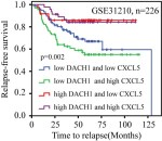 DACH1 inhibits lung adenocarcinoma invasion and tumor growth by repressing CXCL5 signaling - Global Medical Discovery
