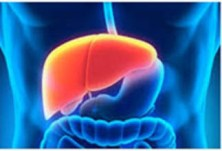 Biomarkers of liver fibrosis detecting with electrochemical immunosensor on clinical serum. Global Medical Discovery