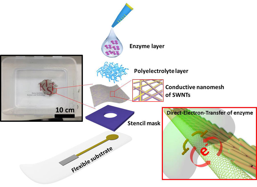 Direct Electron Transfer of Enzymes in a Biologically Assembled Conductive Nanomesh Enzyme Platform- Global Medical Discovery