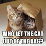 Who-Let-the-Cat-Out-of-the-Bag