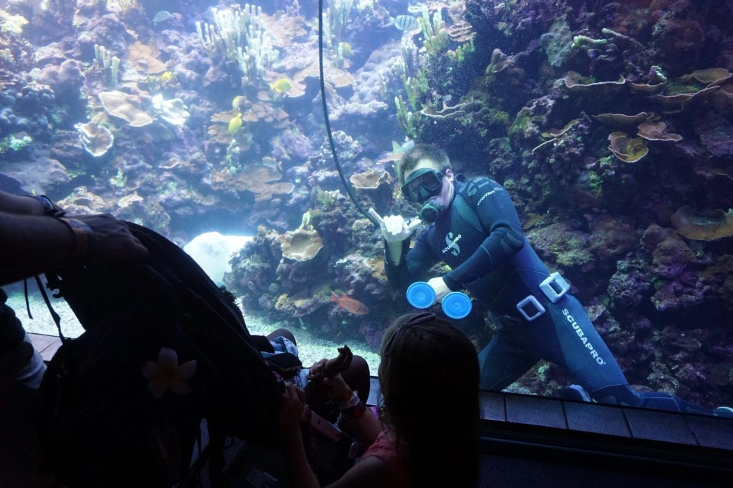 Maui_Ocean_Center