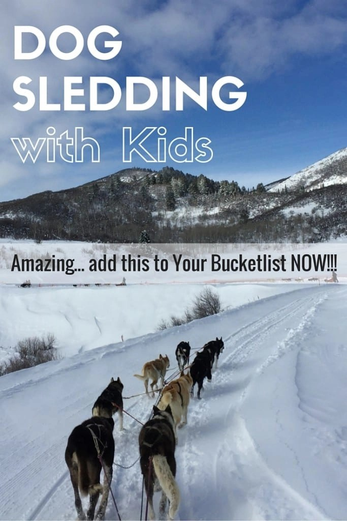 Dog Sledding with kids is a once in a lifetime experience. Check out one of the greatest experiences of our life.
