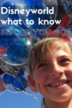 Excellent Disney World tips & tricks from a pro | Global Munchkins