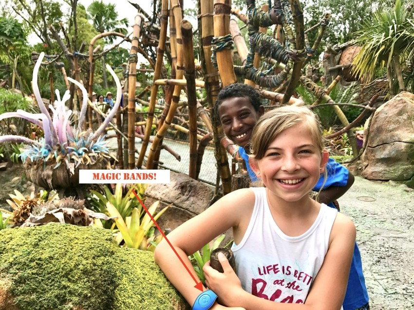 Disney World Tips & Tricks [Over 100 Amazing MUST KNOW Tips]