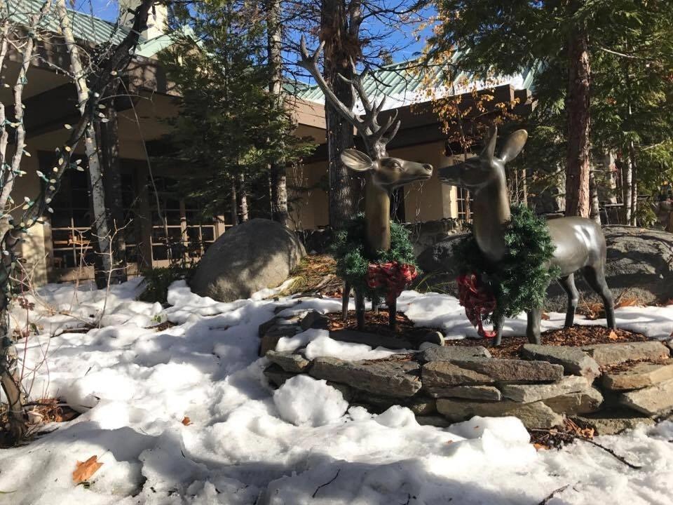 Tenaya Lodge , one of Yosemite's Resorts, during winter