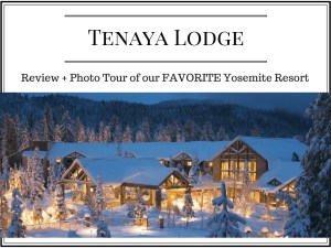 Yosemite Resorts- my favorite luxury hotels for families is Tenaya Lodge. It's also pretty budget friendly when you compare it to other luxury resorts.