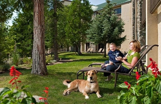Tenaya Lodge is the most incredible place to stay with pets. Check out all of their amazing pet-friendly amenities