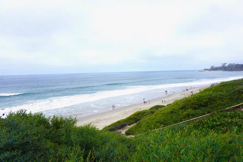 The Ultimate Guide To The Best Dana Point Restaurants And