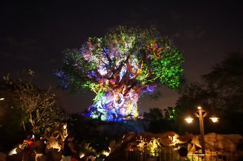 Animal Kingdom Fast Pass - Tree of Life