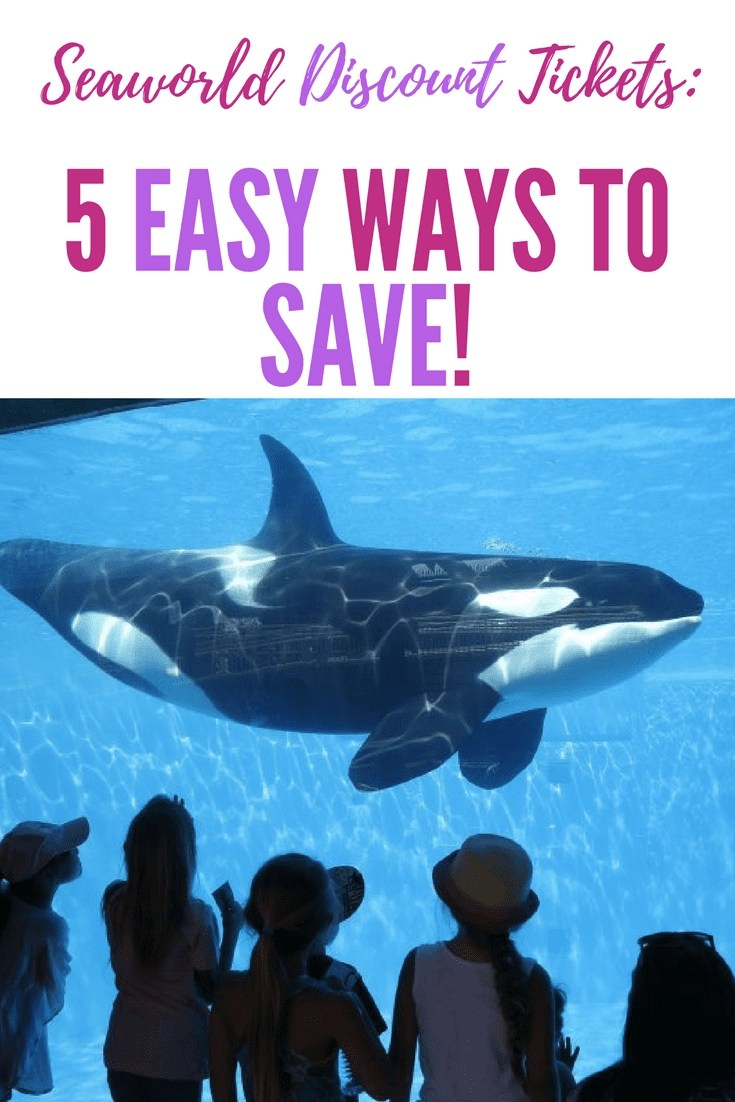 Discount Sea World Tickets! 5 Easy ways to Save Money at Sea World. #seaworld #seaworldtickets