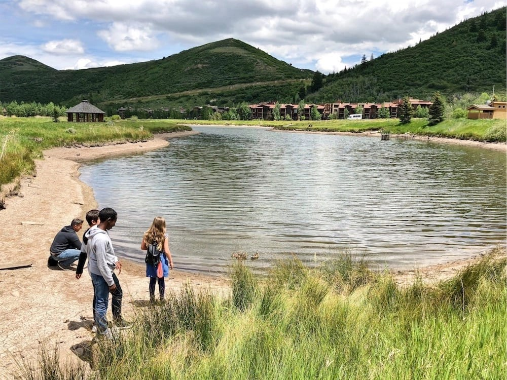 Feeding the Ducks in Deer Valley is fun thing to do on a Deer Valley Summer Day