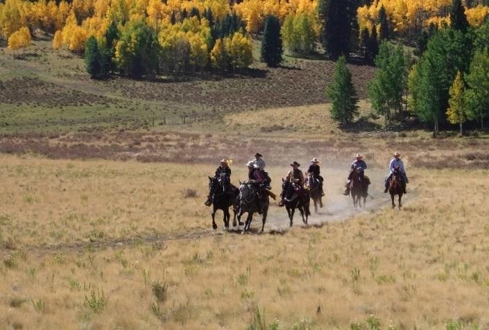 Rainbow Trout Ranch - Colorado