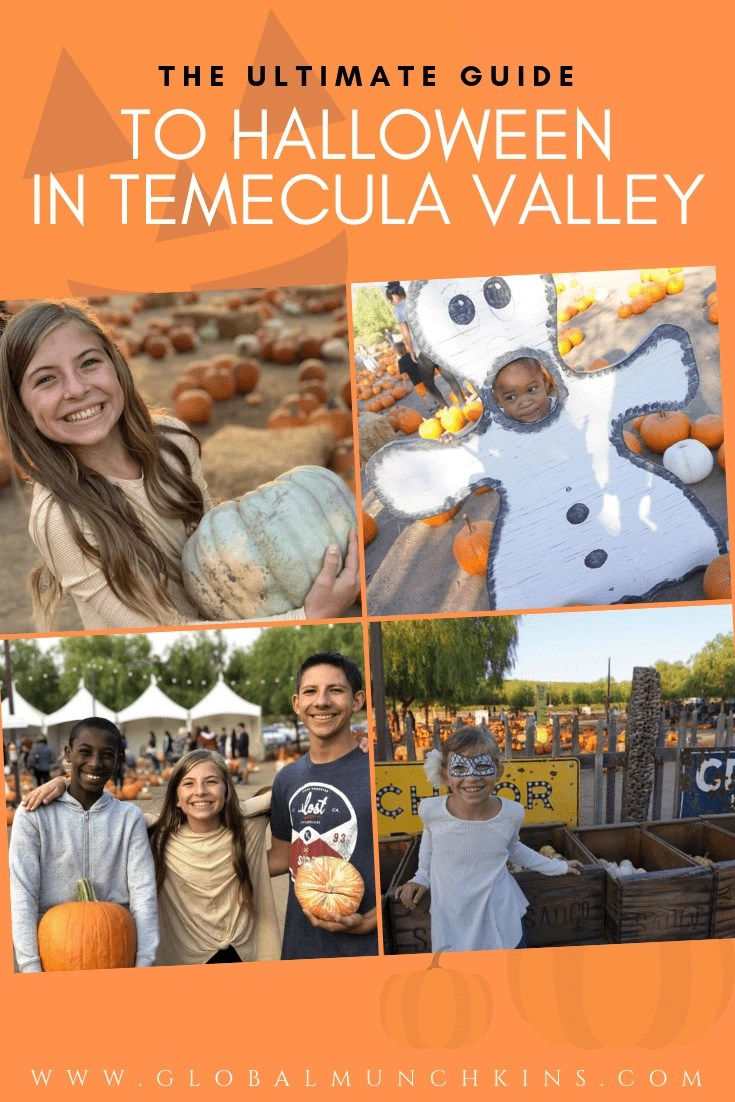 Can you believe it's Fall?? Crazy right… well, take a deep breath because I have put together an amazing guide to Halloween Activities in Temecula and the surrounding communities. It's ALL right here in one place so you can sit back and relax! #halloween #falltips #fall #temecula #californiatravel #temecula #traveldestinations #traveltips #familyvacation