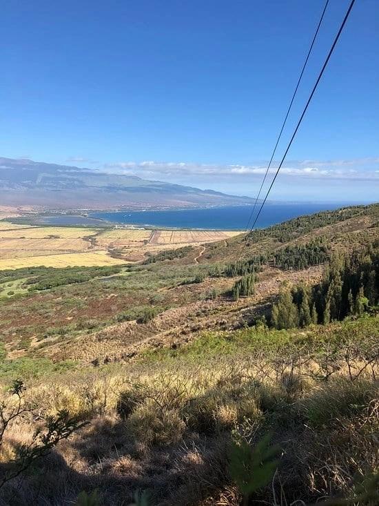 Maui Zipline