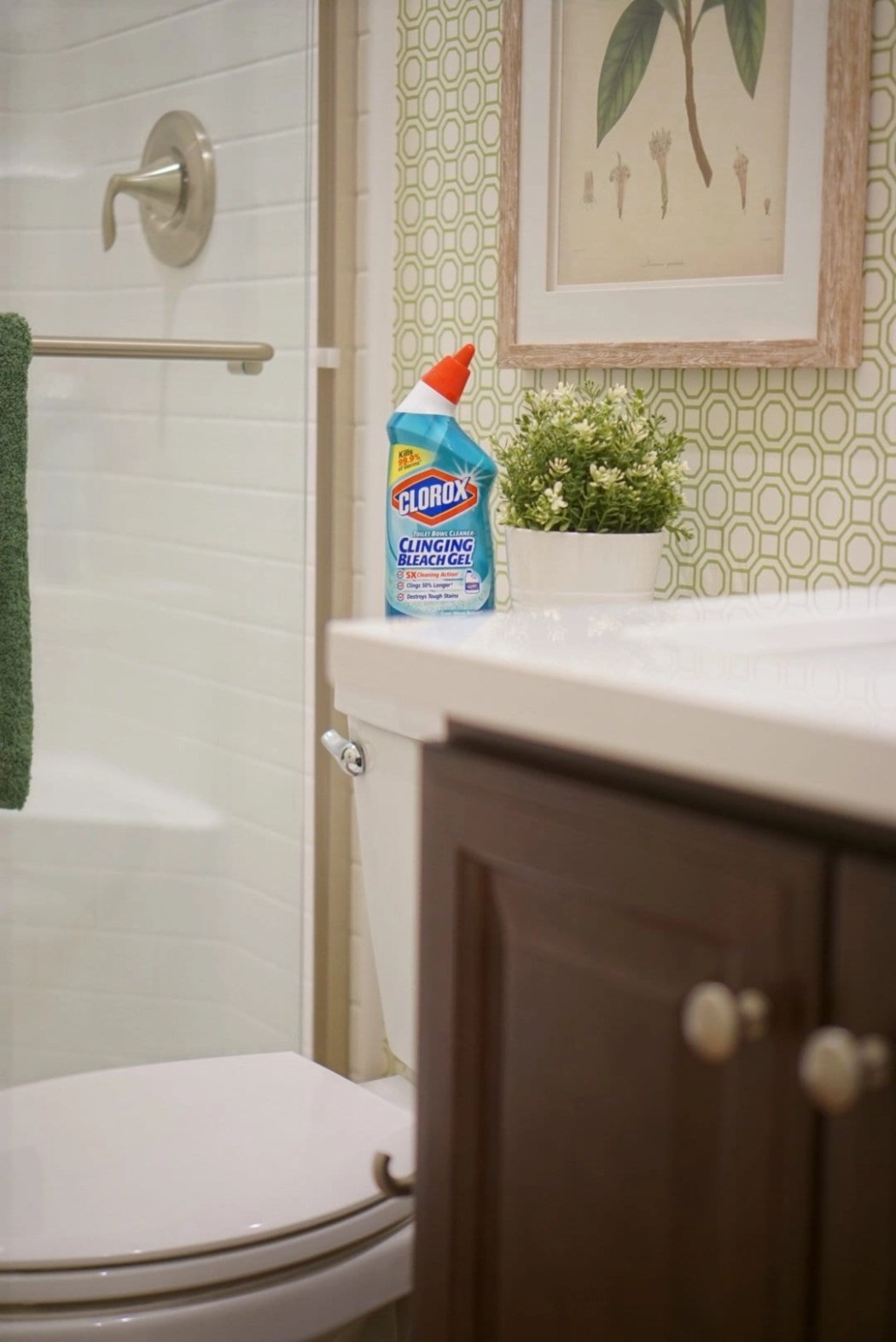 Clorox Toilet Bowl Cleaner