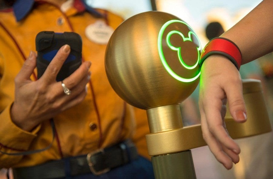 Disney World Parks Magic Banf