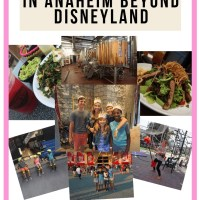Top 30 Amazing Things To Do in Anaheim Beyond Disneyland