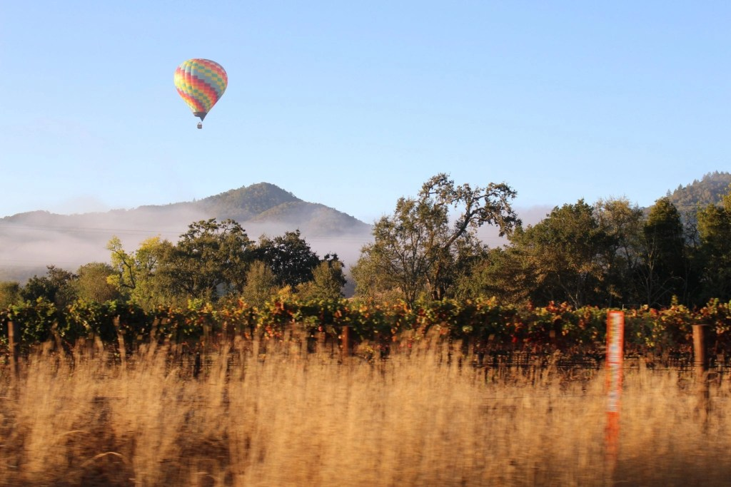 Best things to do in California - Napa Valley
