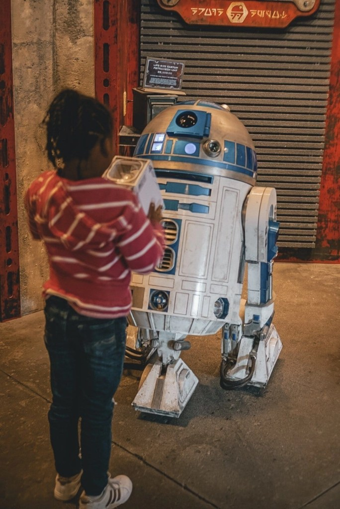 R2 D2 - Star Wars Land