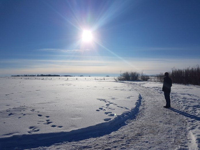 The Your Saskatchewan photo of the day for Feb. 2 of the Rosthern Walking Trails was taken by Cheryl Schmidt.