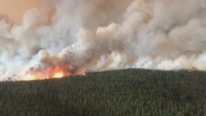 Province asks for federal help fighting wildfires